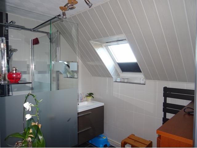 salle de bain meublée- équipée-douche lavabo-sous sol complet garage-
