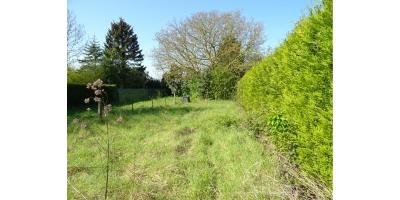 jardin-arbres-vente maison-rouvroy-acheville-billy montigny-