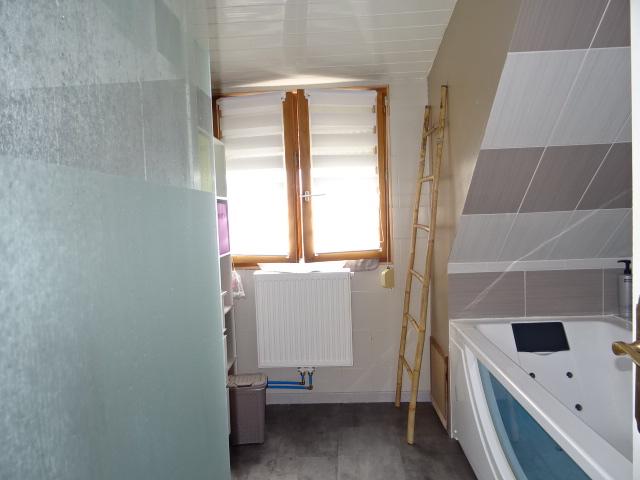 salle de bain douche-lavabo-baignoiremaison a vendre