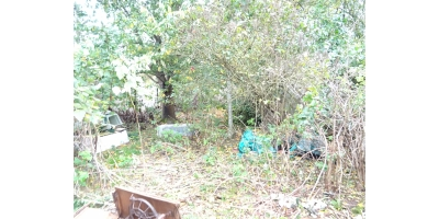 jardin-maison de lotissement-renovation