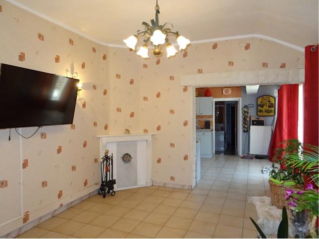 deuxieme salon-cheminee-feu de bois-poele-cave